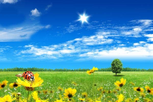 清新的自然风光PPT背景图片