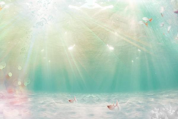 唯美海洋鱼类幻灯片背景图片