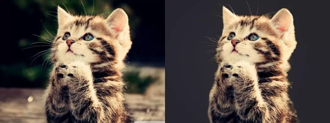 3个超级简单的PS图片处理技巧帮你提升PPT颜值-10
