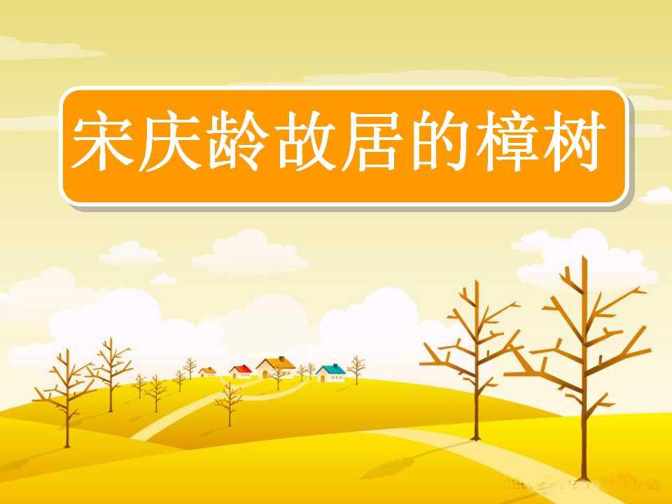 《宋庆龄故居的樟树》PPT课件3