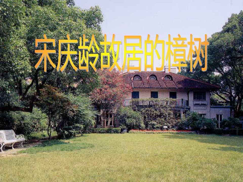 《宋庆龄故居的樟树》PPT课件5