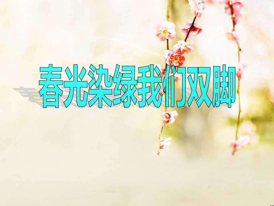 《春光染绿我们双脚》PPT课件5