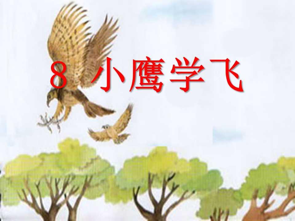 《小鹰学飞》PPT课件3