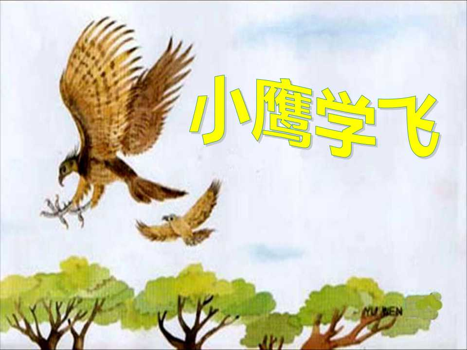 《小鹰学飞》PPT课件4