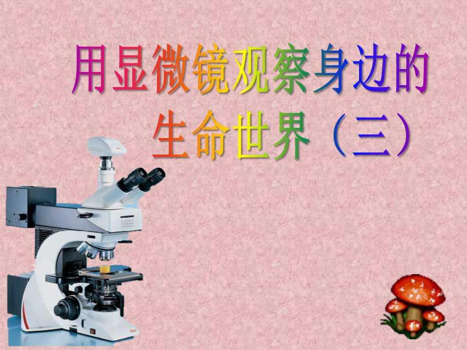 《用显微镜观察身边的生命世界(三)》微小世界PPT课件3