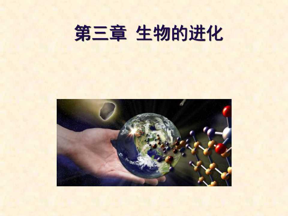 《地球上生命的起源》生物的进化PPT课件4