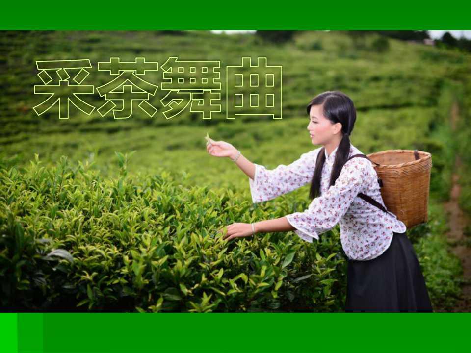 《采茶舞曲》PPT课件3