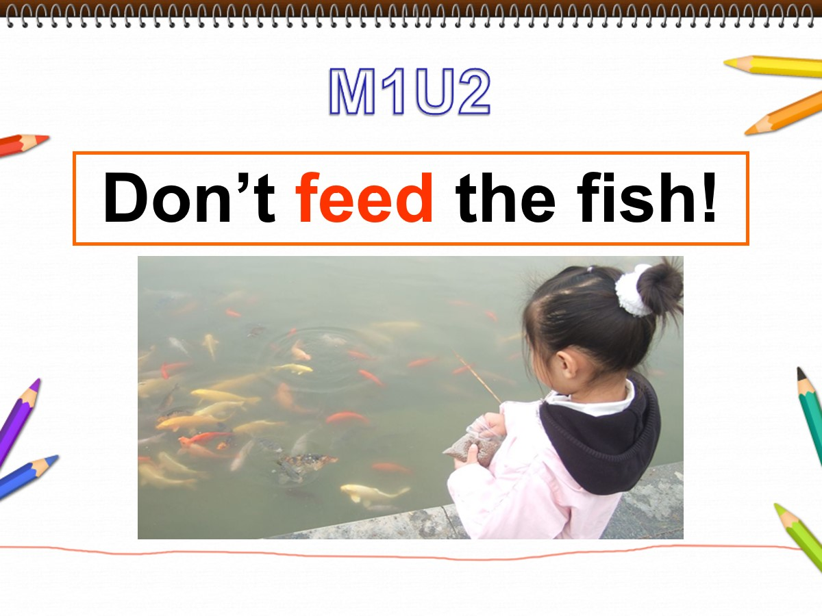 《Don't feed the fish》PPT课件2