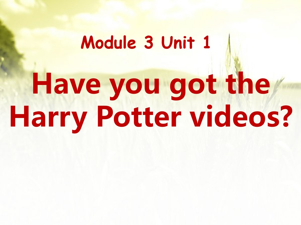 《Have you got the Harry Potter videos?》PPT课件6