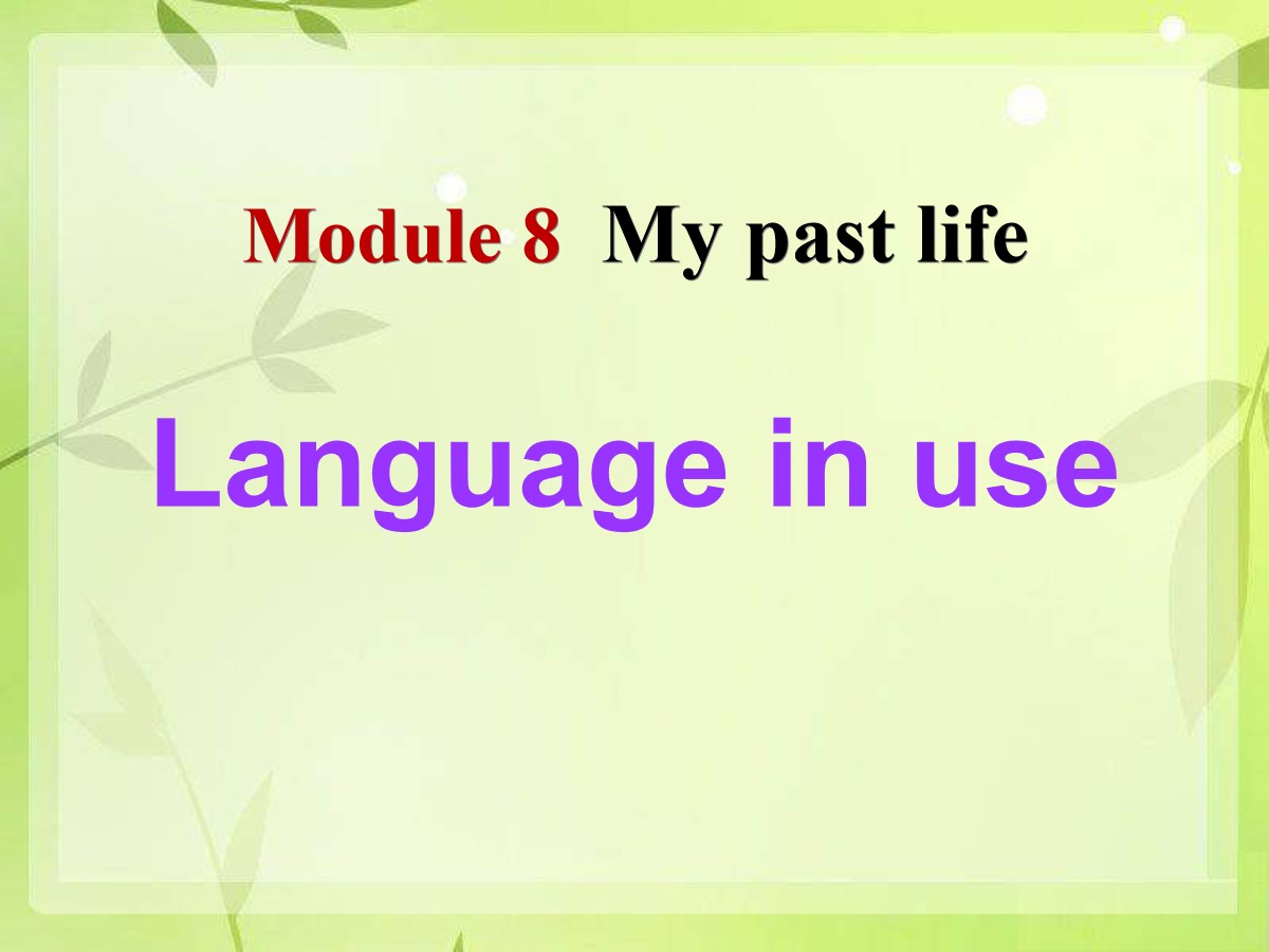 《Language in use》my past life PPT课件2