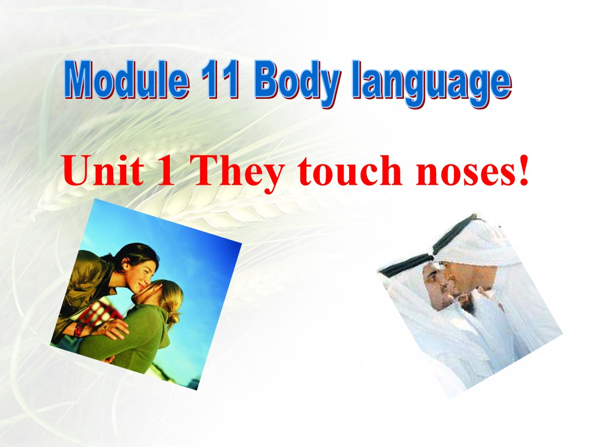 《They touch noses》Body language PPT课件2