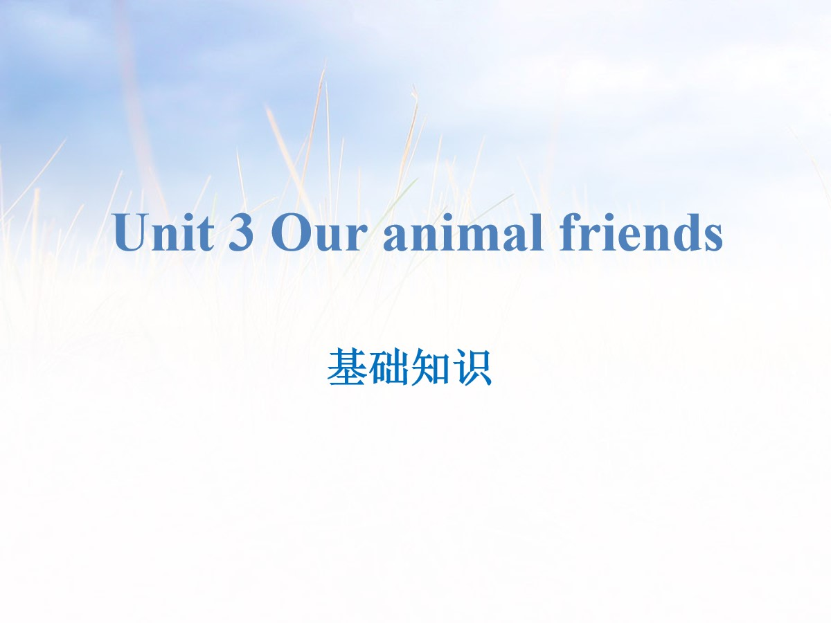 《Our animal friends》基础知识PPT