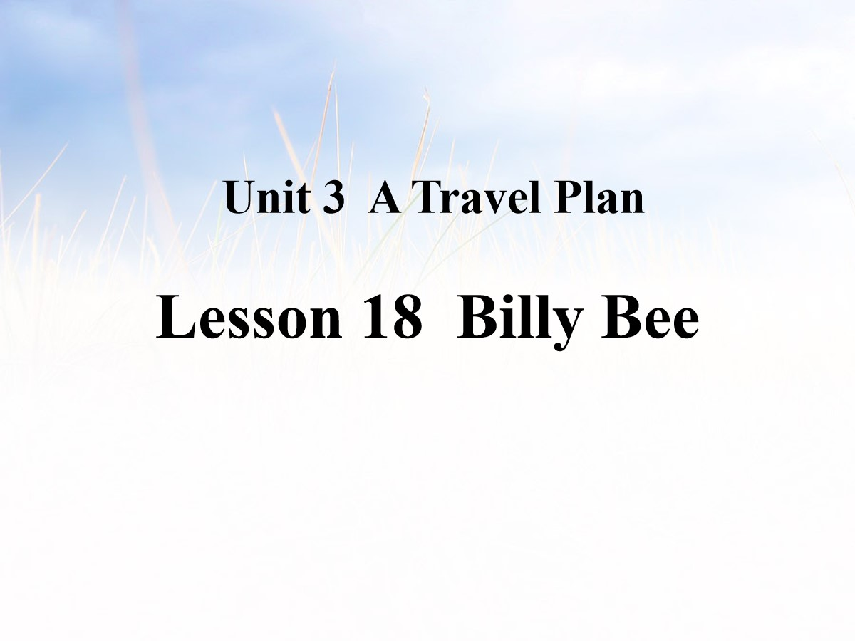 《Billy Bee》A Travel Plan PPT课件