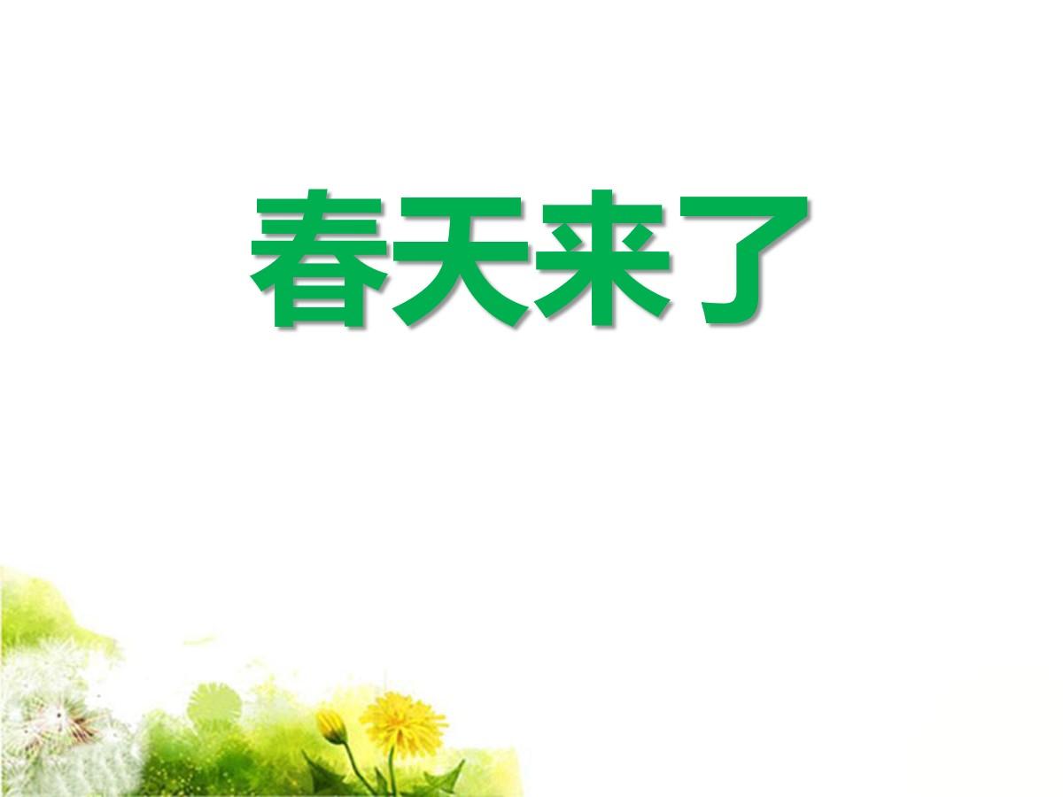 《春天来了》PPT