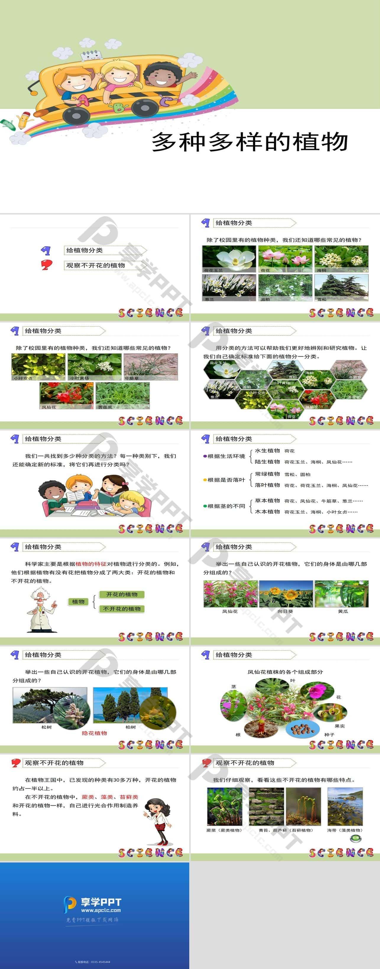 《多种多样的植物》生物的多样性PPT长图