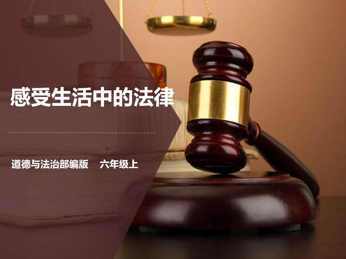 《感受生活中的法律》我们的守护者PPT课件