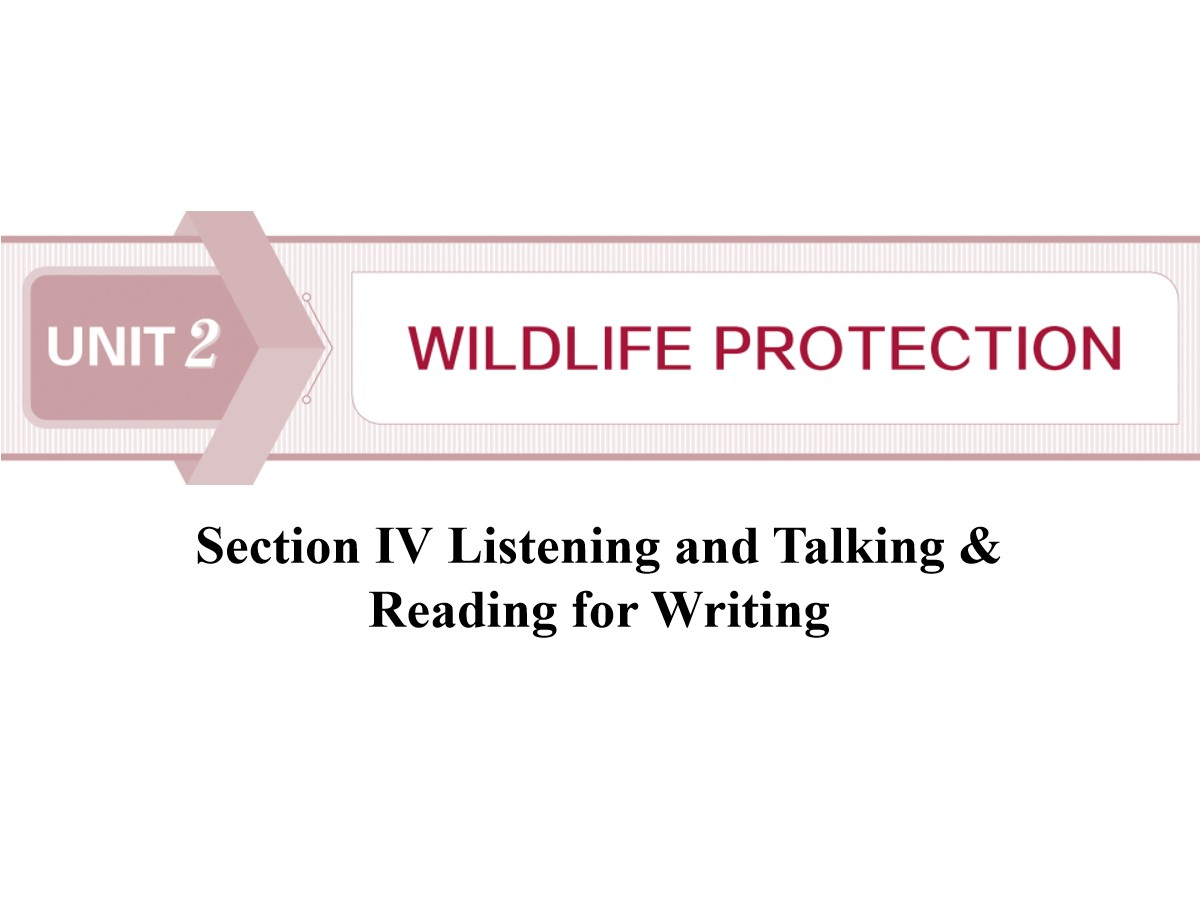 《Wildlife Protection》SectionⅣ PPT