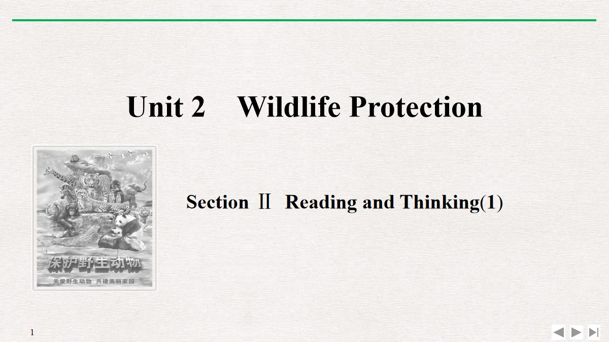 《Wildlife Protection》SectionⅡ PPT课件