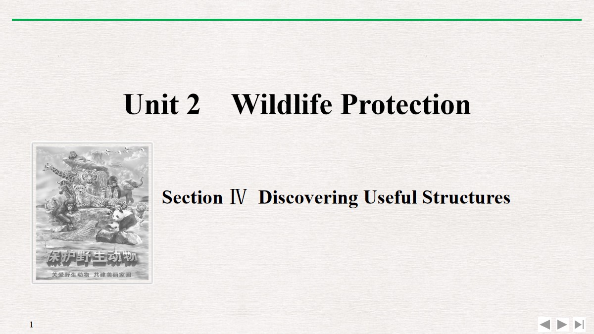 《Wildlife Protection》SectionⅣ PPT课件