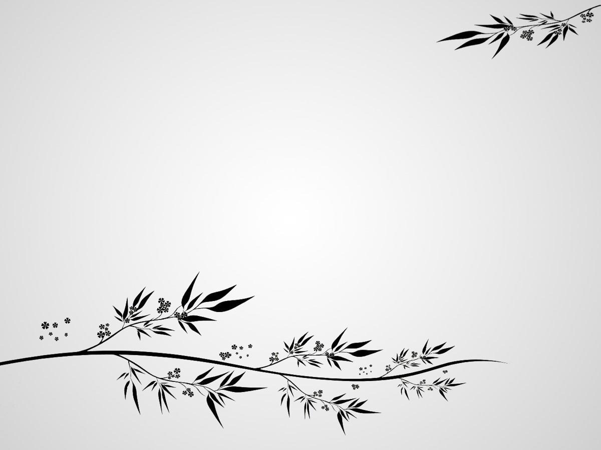 古典花纹背景PPT模板