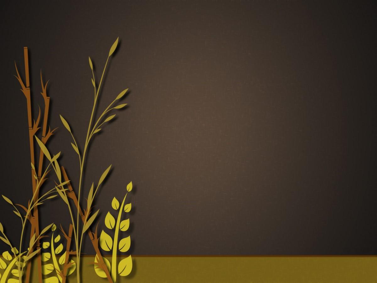 水稻小麦背景植物类幻灯片模板