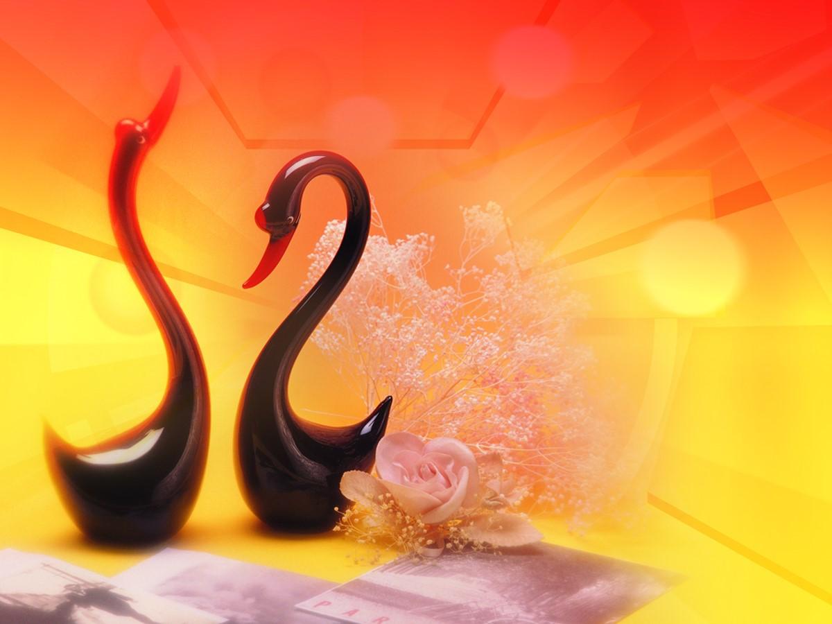 两只小天鹅背景的浪漫爱情幻灯片模板