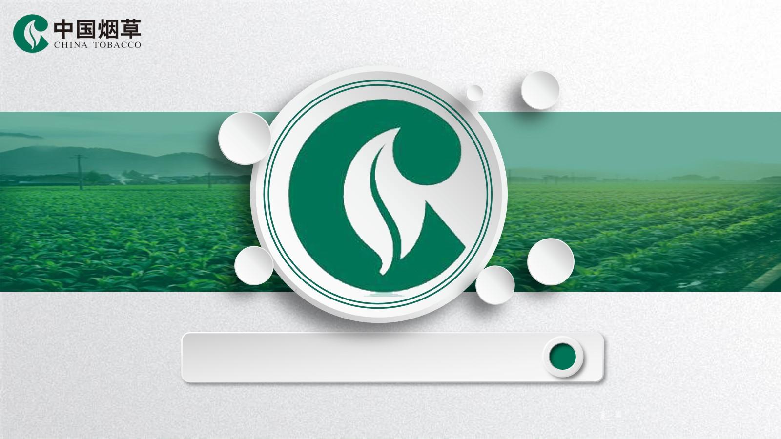 烟草植物背景的中国烟草PPT模板