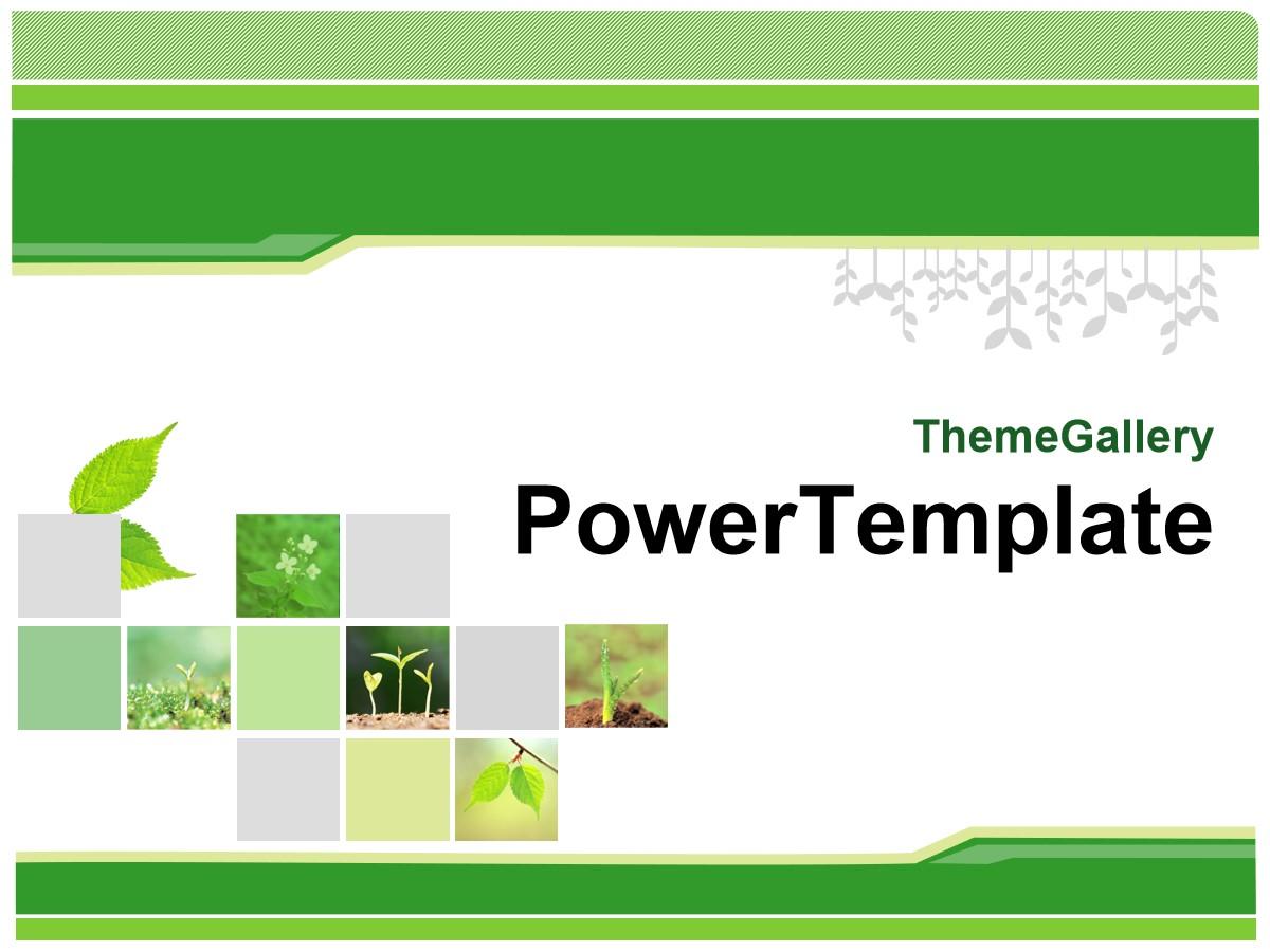 经典绿色植物PPT模板