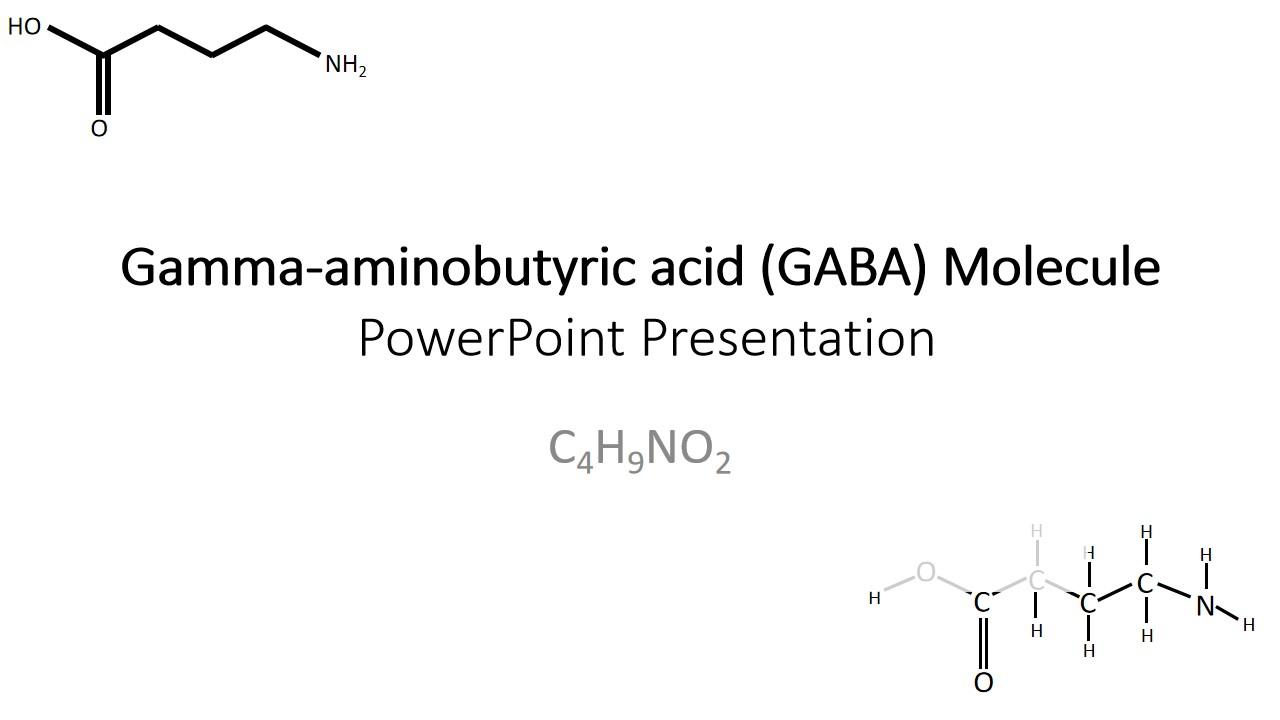 GABA分子PPT模板