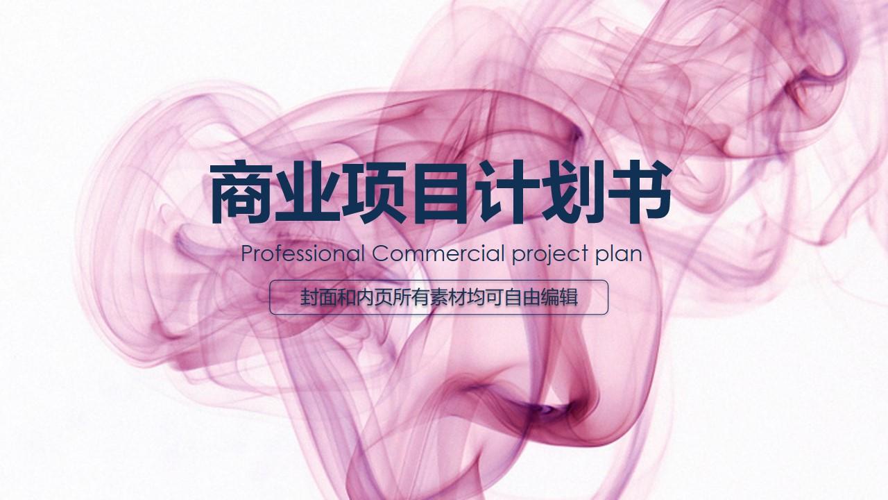 2020高端大气商业策划PPT模板